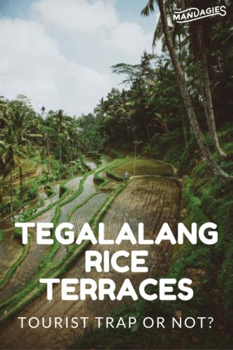 tegalalang-rice-terraces-pinterest