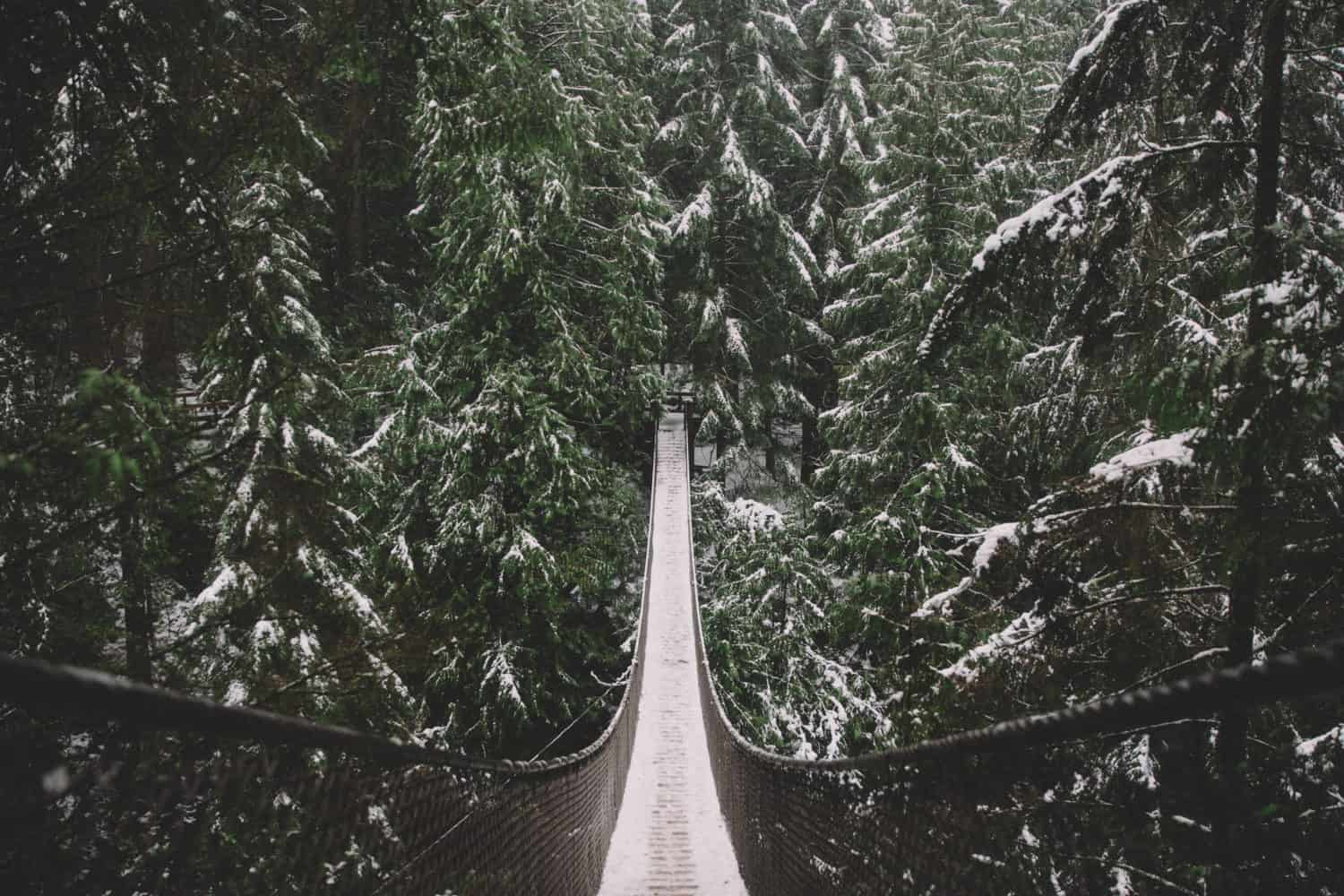 Vancouver Canada, Capilano Suspension Bridge