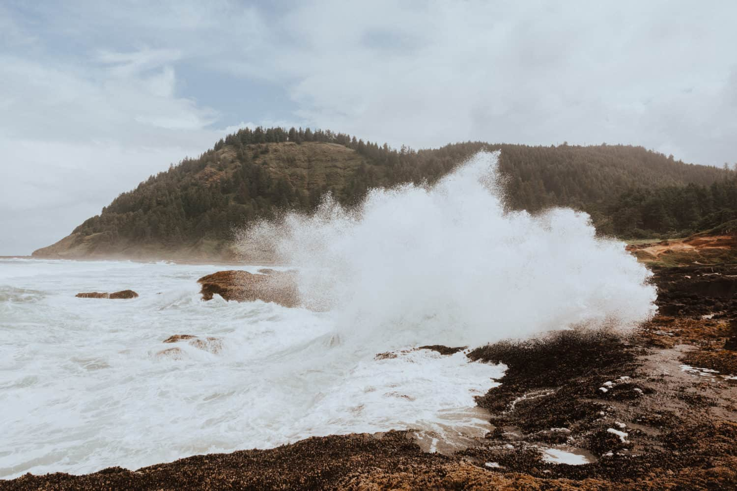 Things To Do In Cape Perpetua - TheMandagies.com