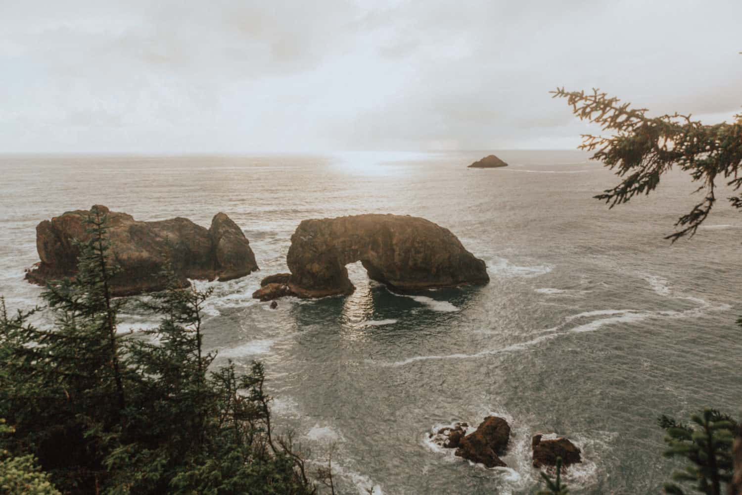 Arch Rock at Samuel H. Boardman Scenic Corridor
