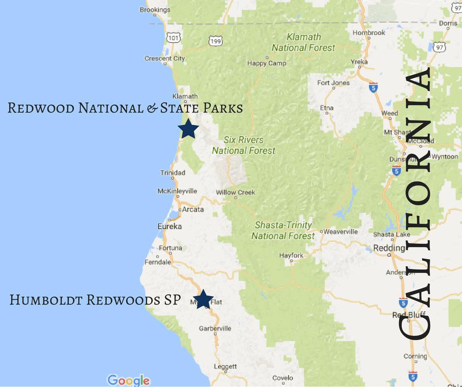 Map Of California Redwoods.Driving Through Redwood National Park The Mandagies