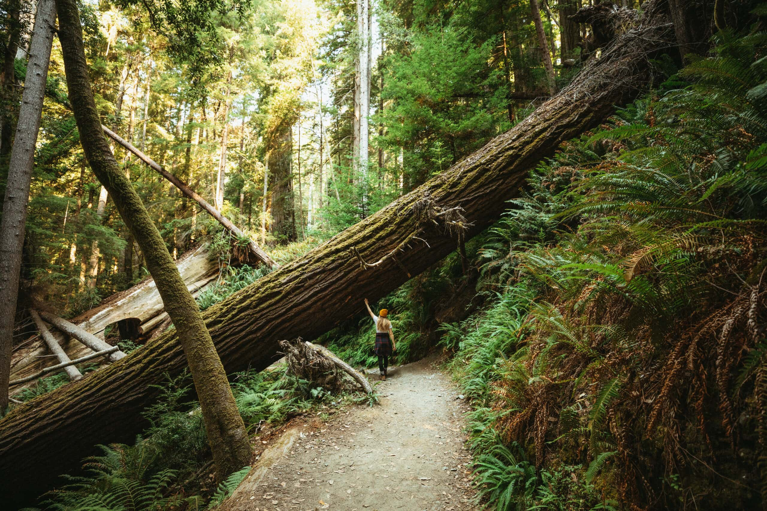Where You Should Travel in The Pacific Northwest, Based on Your Zodiac Sign