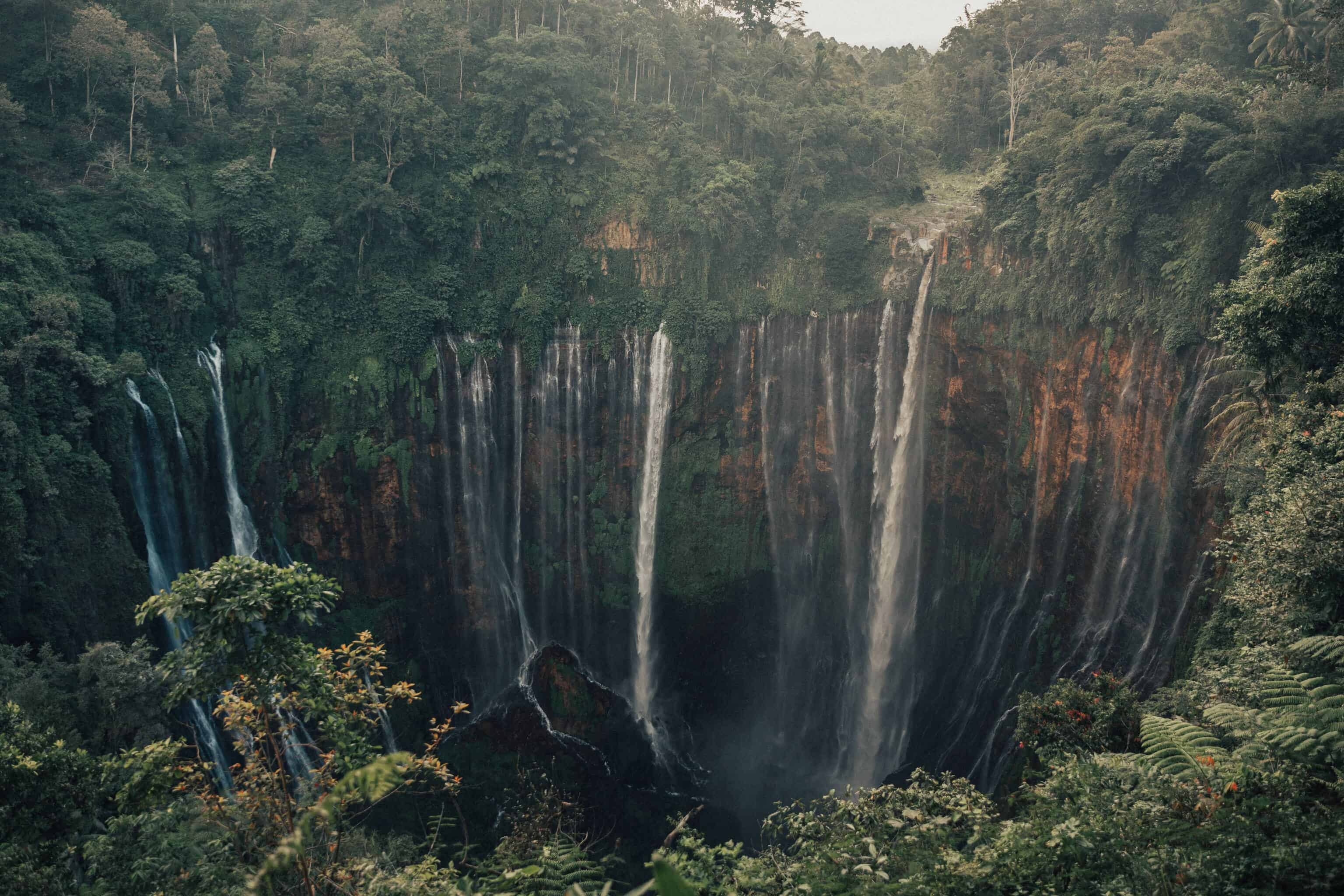 User submitted photo of Tumpak Sewu Waterfall