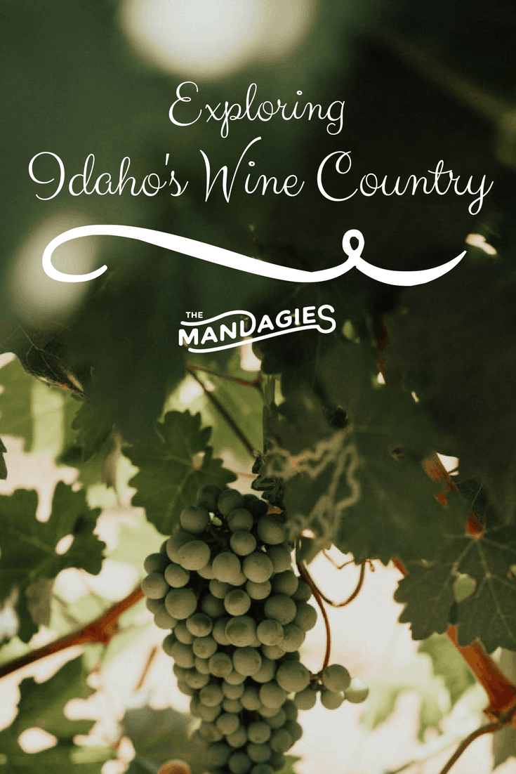 Explore the enchanting Snake River Valley near Boise, Idaho for a day of sunshine and wine! Idaho's Wine Country is sure to impress!