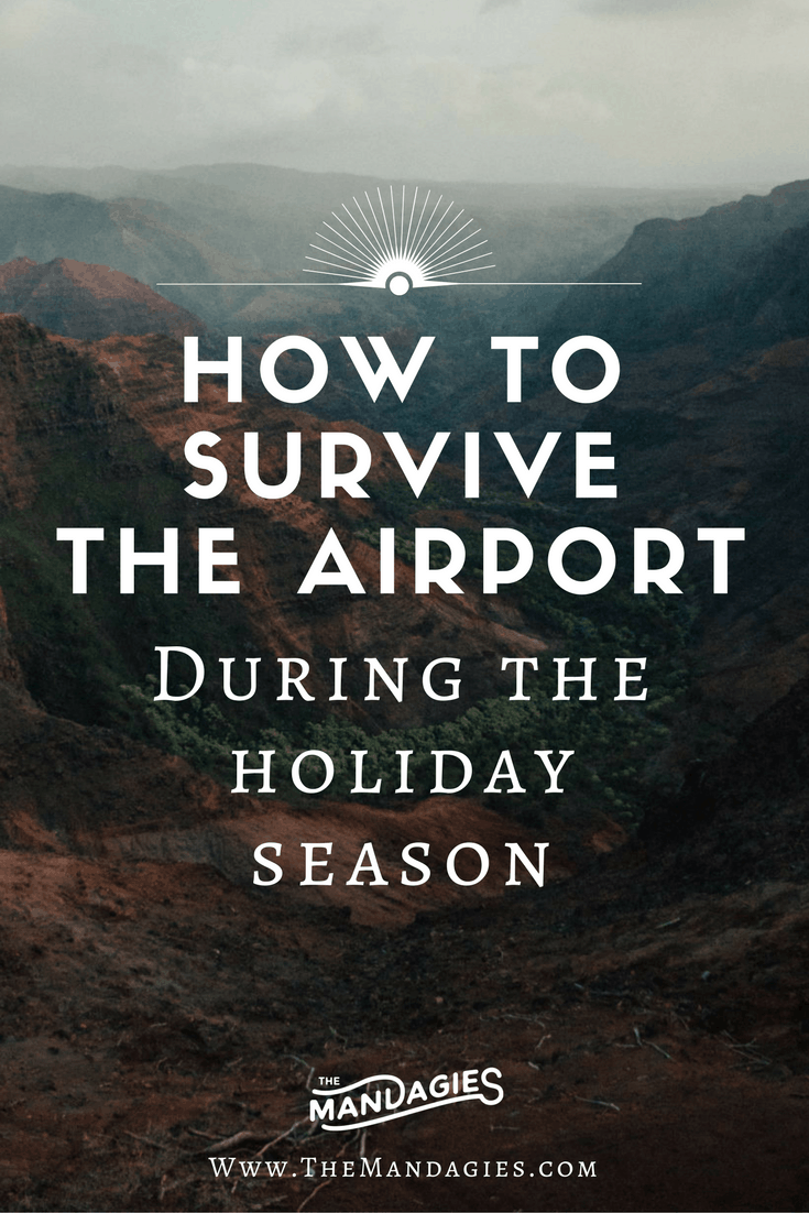 I don't know about you, but when I think of the airport during Christmas time, I imagine the McCallister family from Home Alone sprinting through the Chicago terminal, barely making it to their gate to Paris. Airports can be stressful! That's why we made a guide for you, to help you survive the airport during the busy holiday season - read the post here!