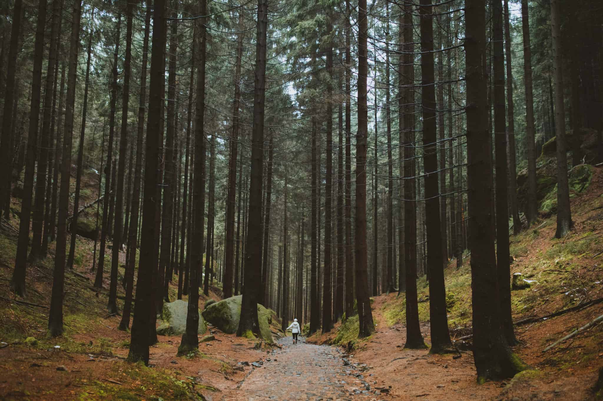 Bohemian Switzerland: An Epic Day Trip From Prague -TheMandagies.com