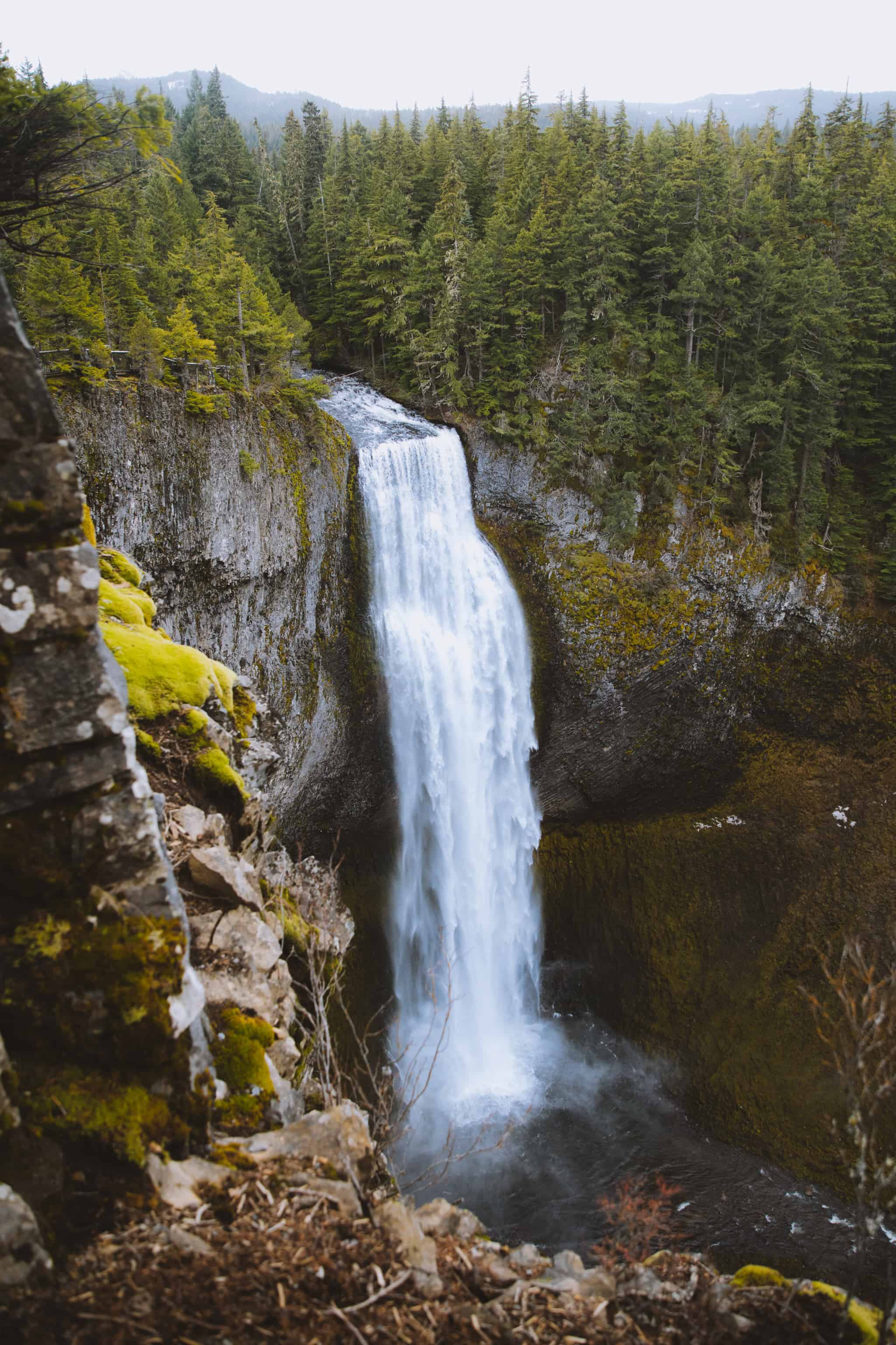 12 Laid-Back Things To Do In Eugene, Oregon - Salt Creek Falls