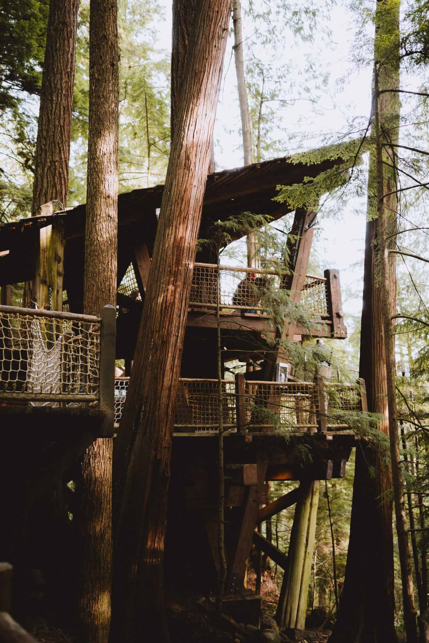 Tree House at Capilano Suspension Bridge Park