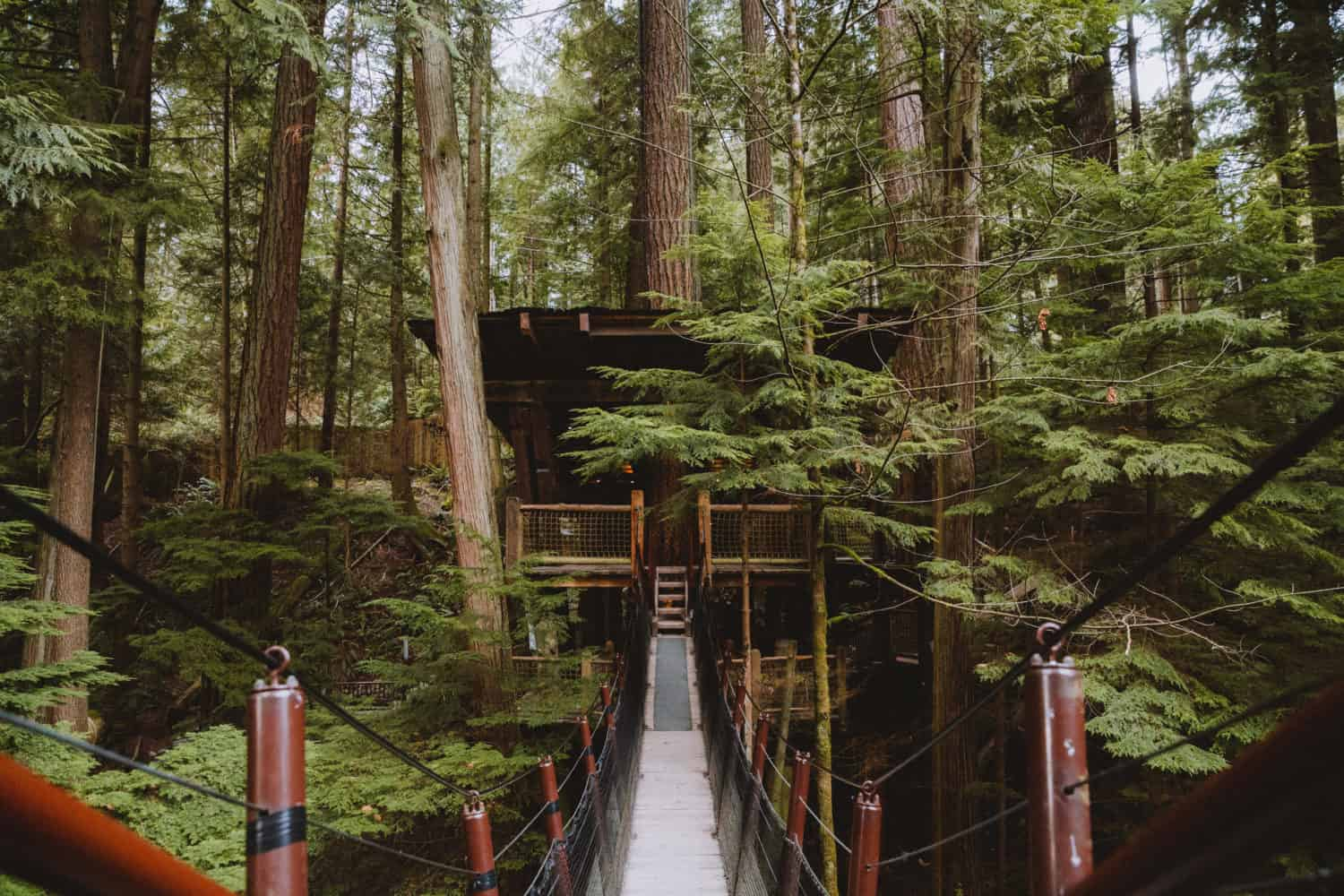 Things To Do In The Pacific Northwest (British Columbia, Canada)