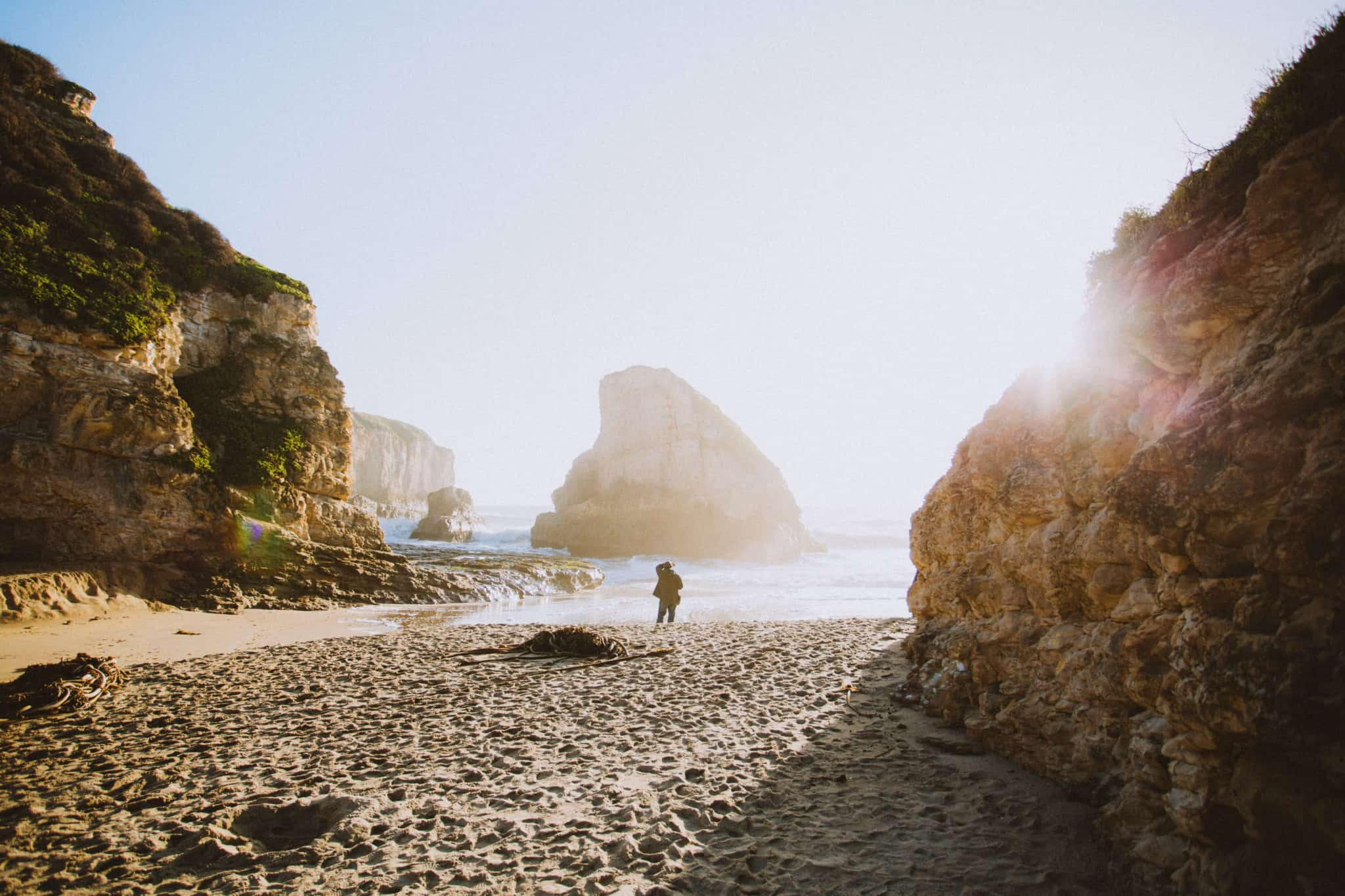 Shark Fin Cove Beach California