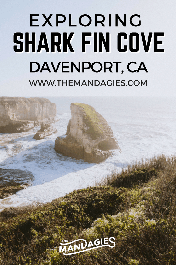 Discover Shark Fin Cove, one of California's hidden gems on your own Highway 1 road trip! This place is a photographers dream - find out why this place is a must-stop on the Pacific Coast Highway! #highway1 #californiaroadtrip #pacificcoasthighway #roadtrip #california #bigsur