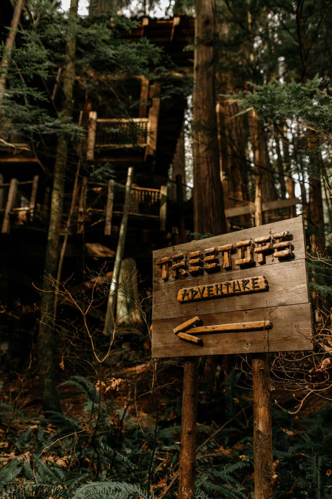 Treetops Adventure at Capilano Suspension Bridge Park