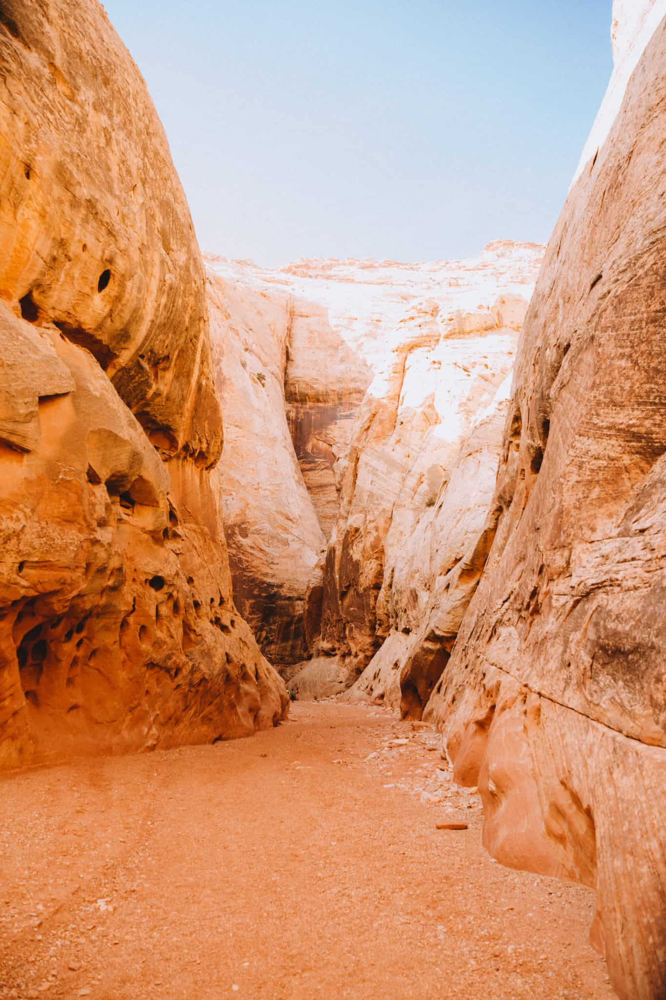 Capitol Reef National Park - Grand Wash Hike