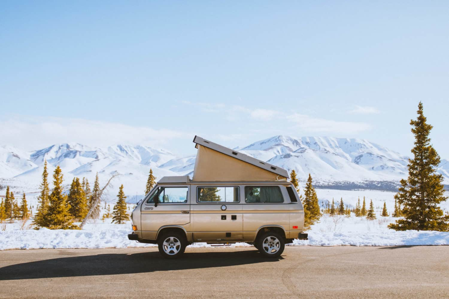 VW Westfalia van camping in Denali National Park, Alaska
