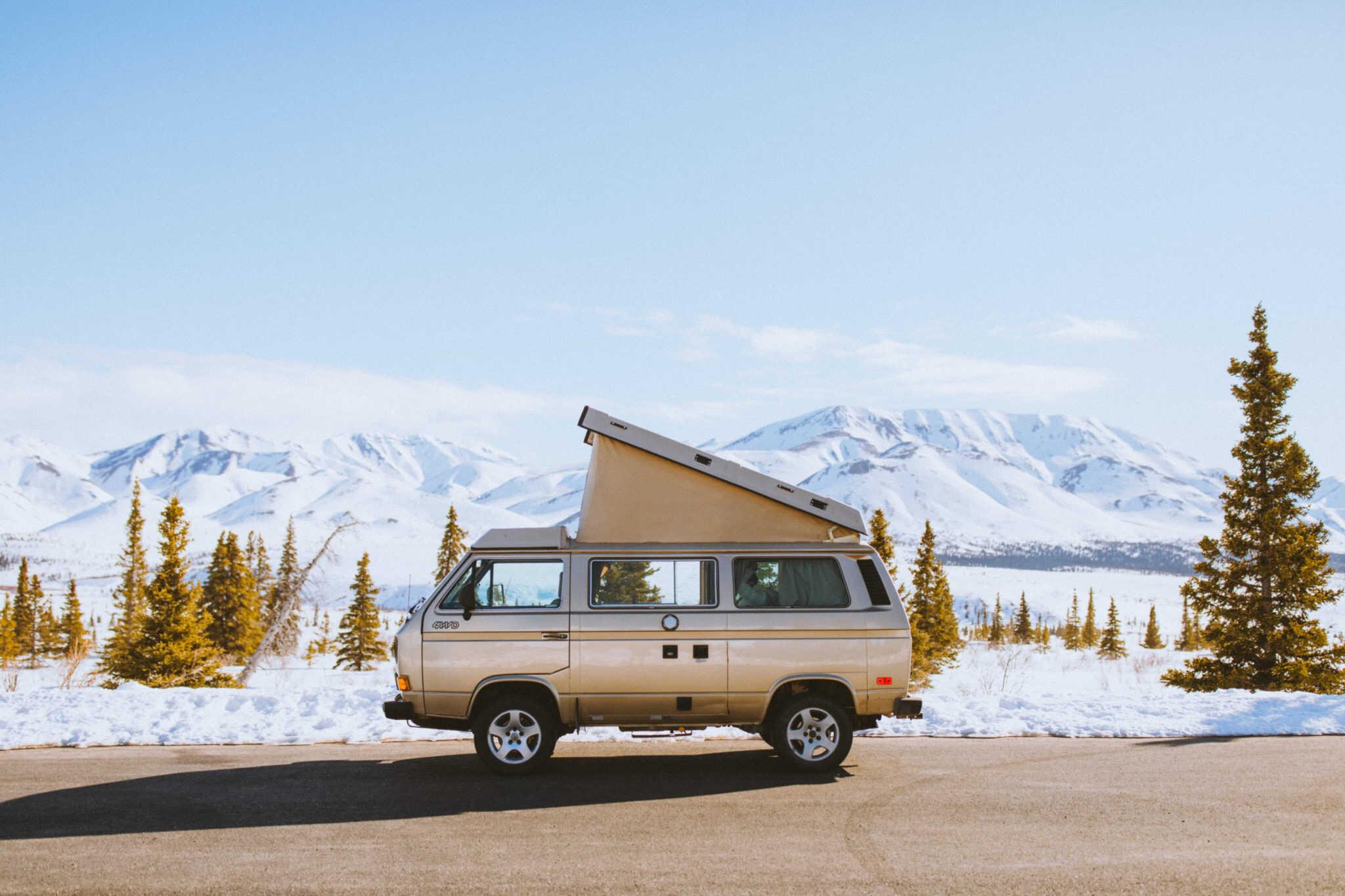 VW Westfalia in Denali National Park - TheMandagies.om