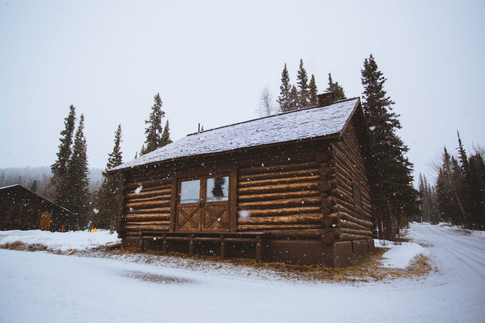 Things To Do In Fairbanks - Denali National Park