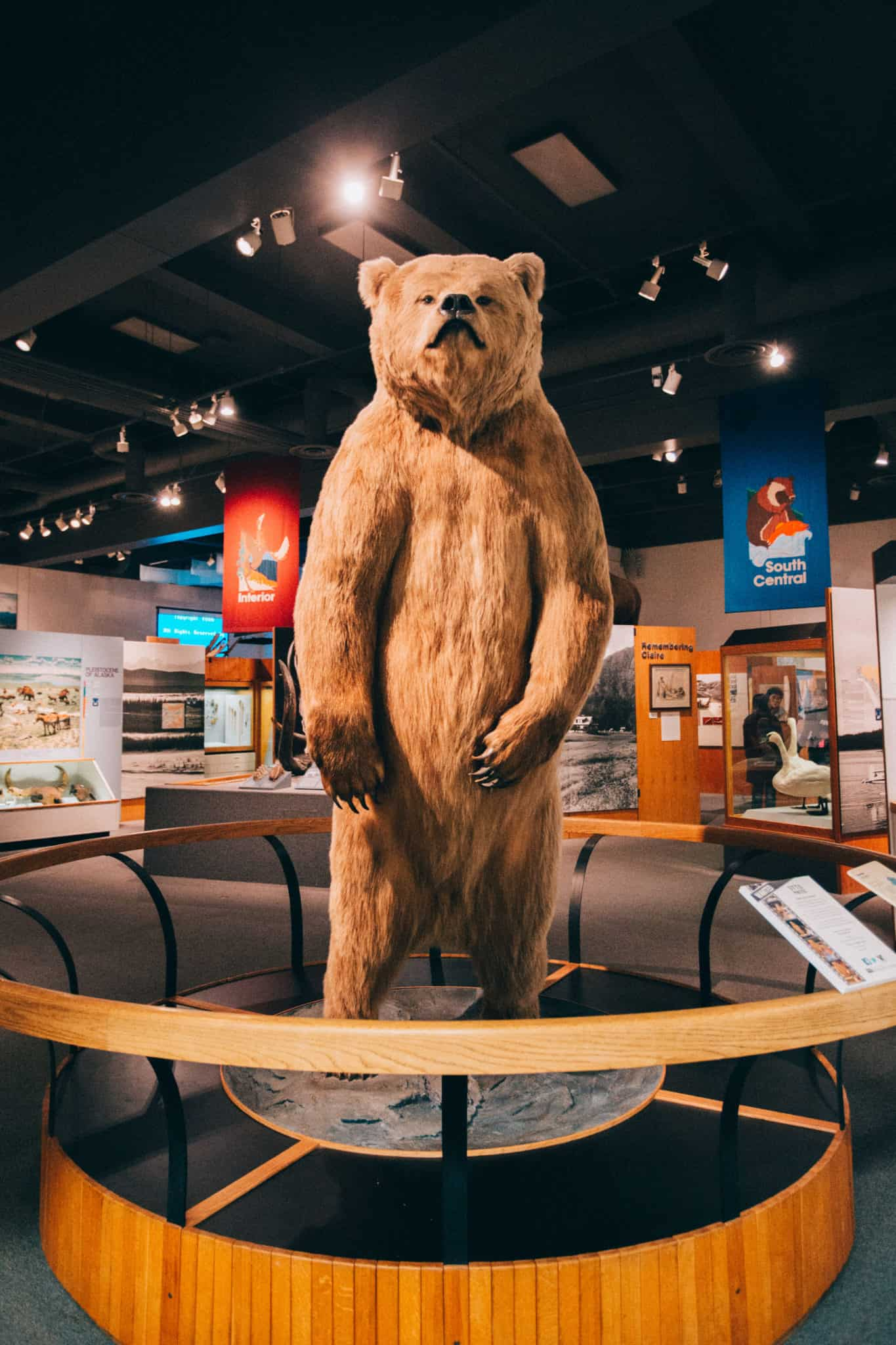 Things To Do In Fairbanks - Museum of The North
