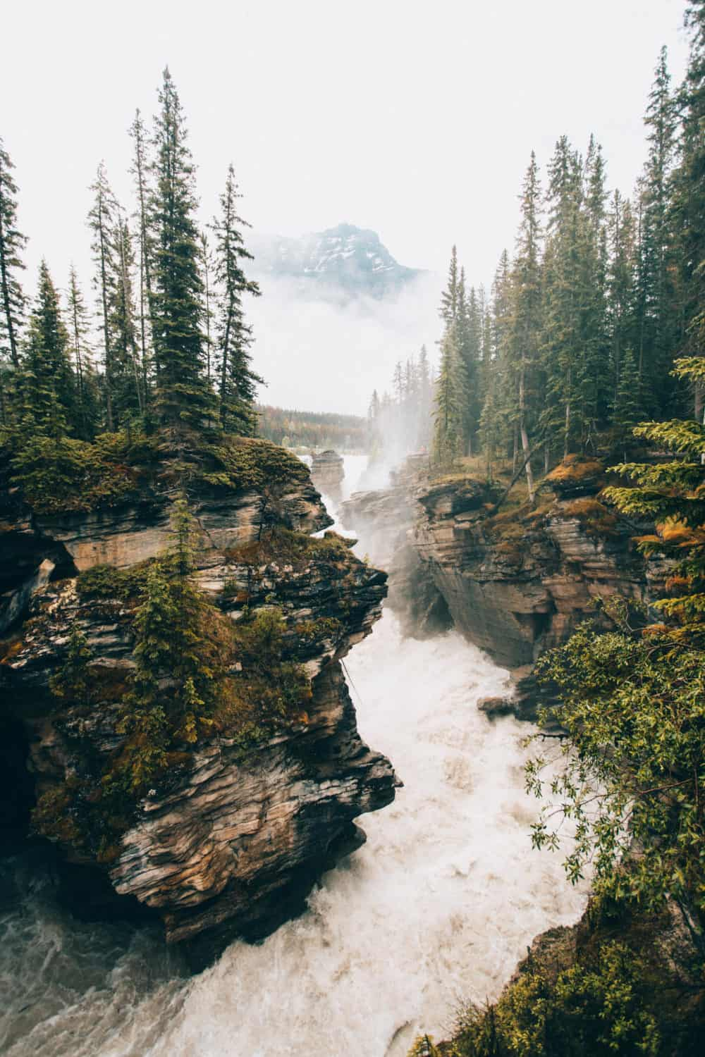 Easy Hikes In Jasper National Park - Athabasca Falls