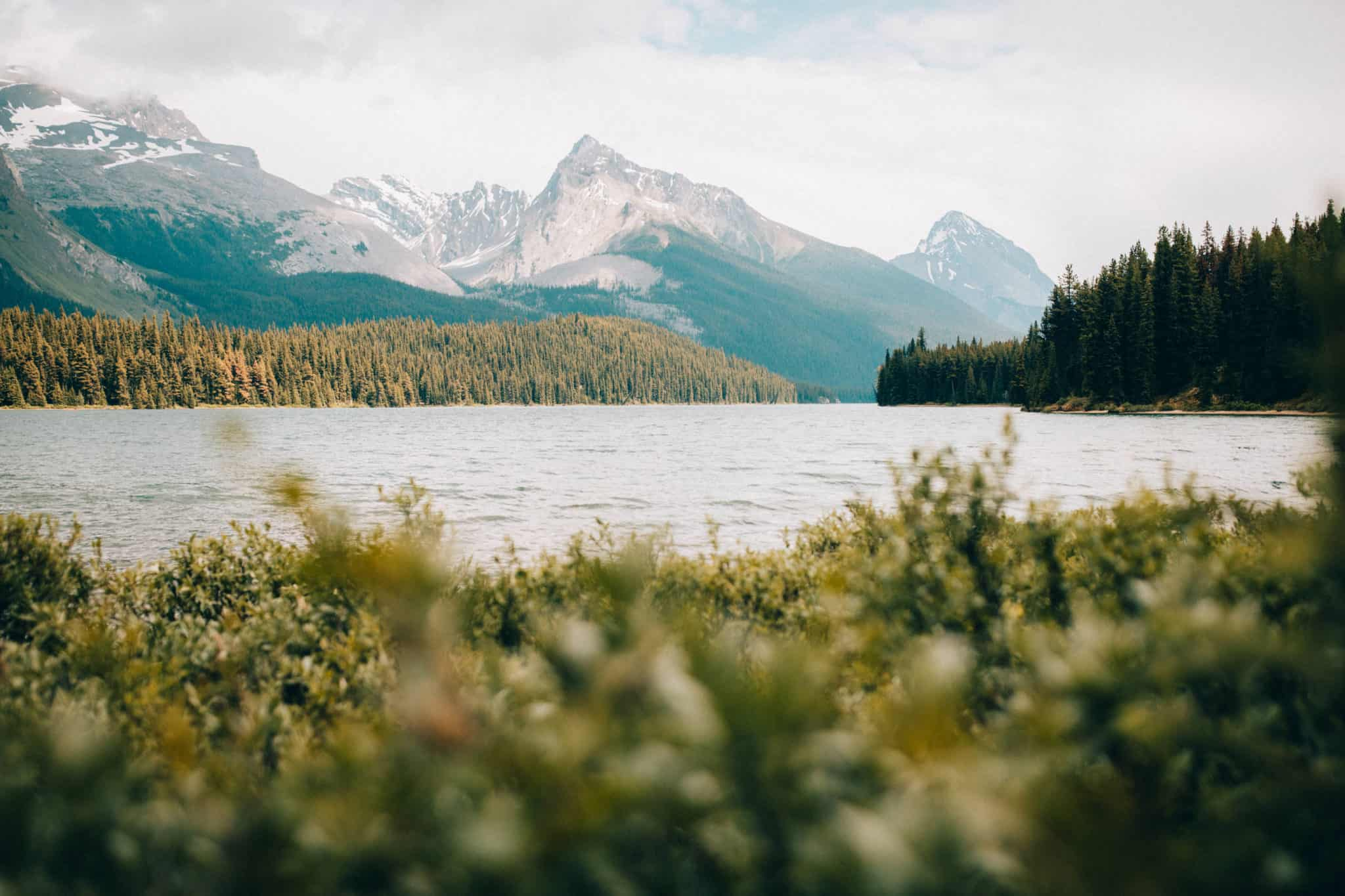 Easy Hikes In Jasper National Park - Maligne Lake