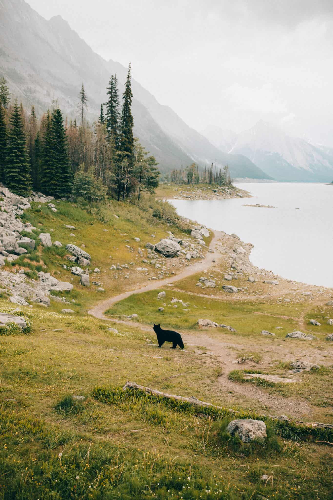 Photo Spots In Jasper National Park - Medicine Lake