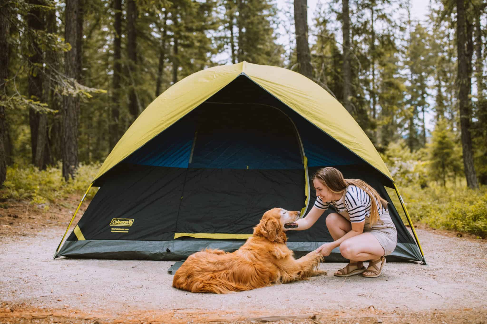 Camping Checklist - Tent