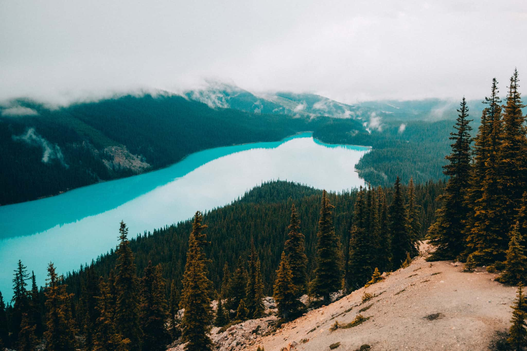 Peyto Lake, Turquoise blue glacial fed lake, Banff National Park