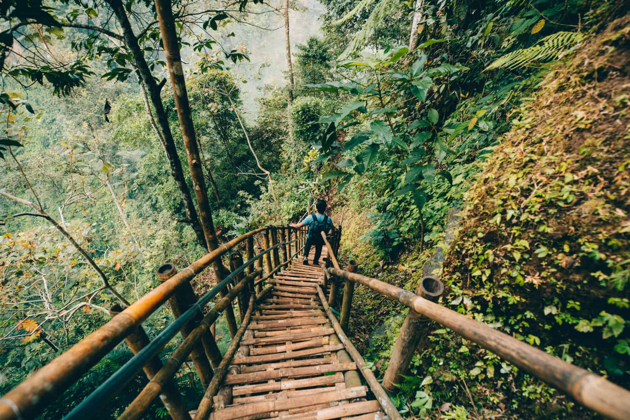 Berty climbing down bamboo stairs at Tumpak Sewu waterfall