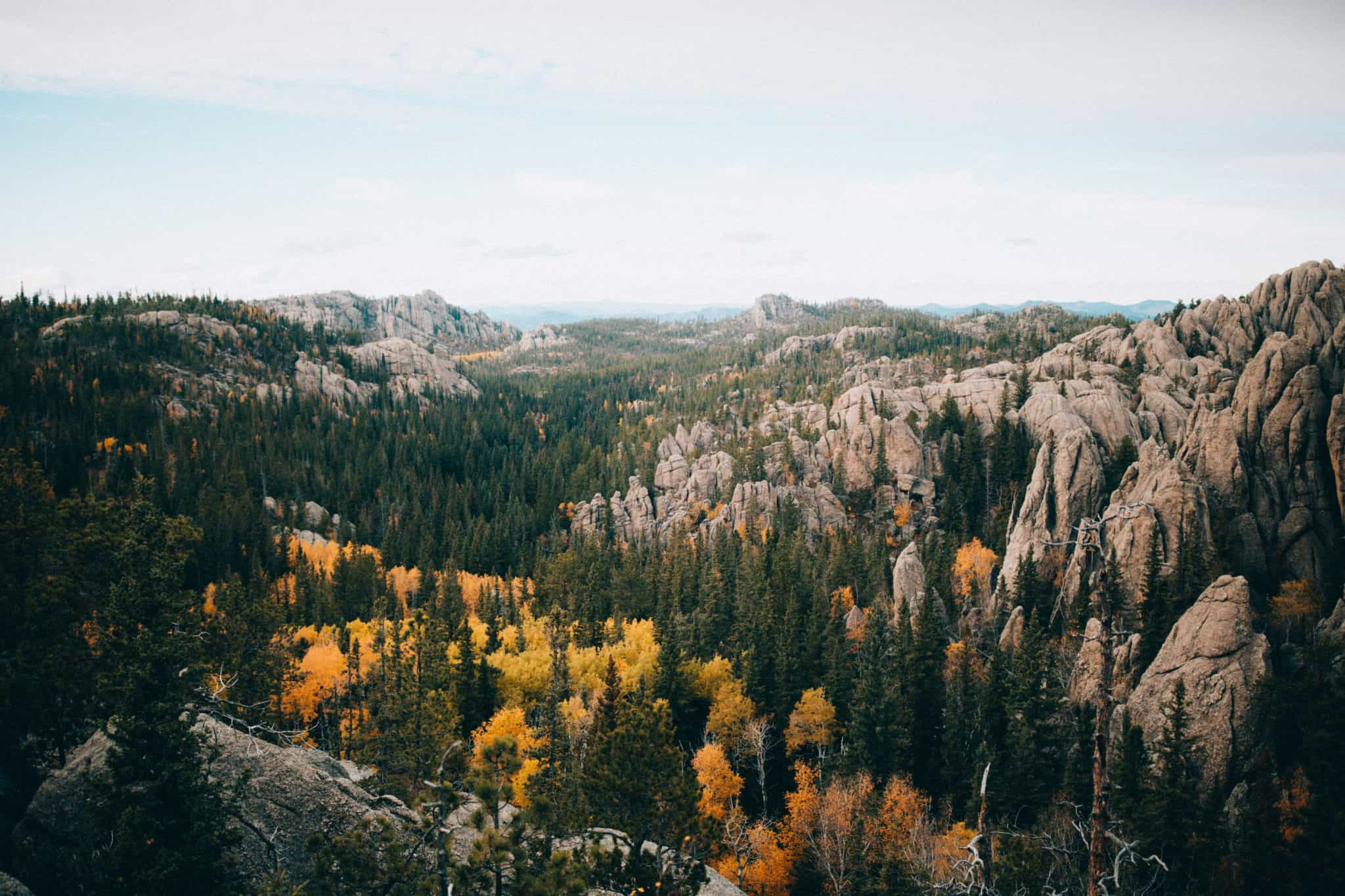 View of Custer State Park, South Dakota