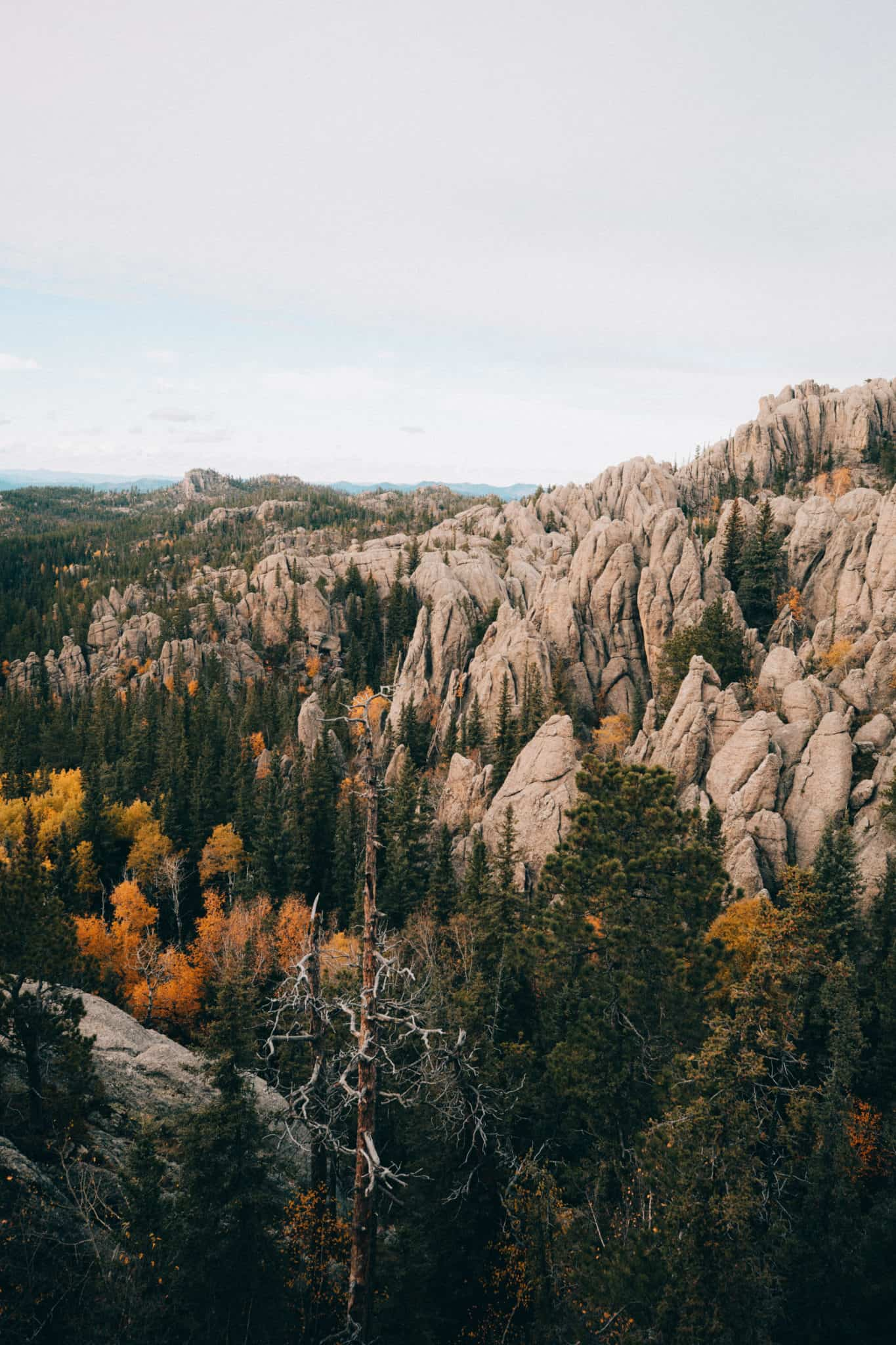 Granite views from Black Elk Peak, South Dakota