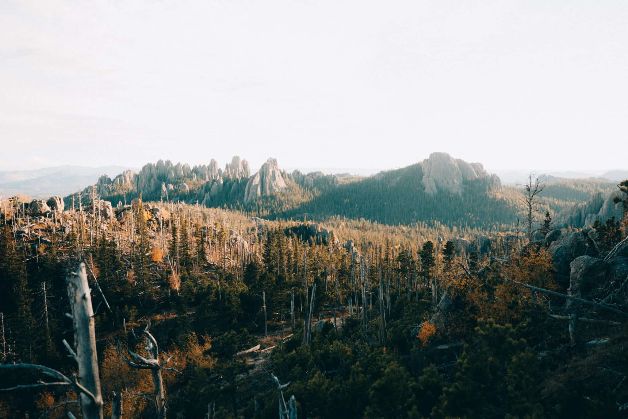 View from the Black Elk Peak Trail, Cathedral Spires