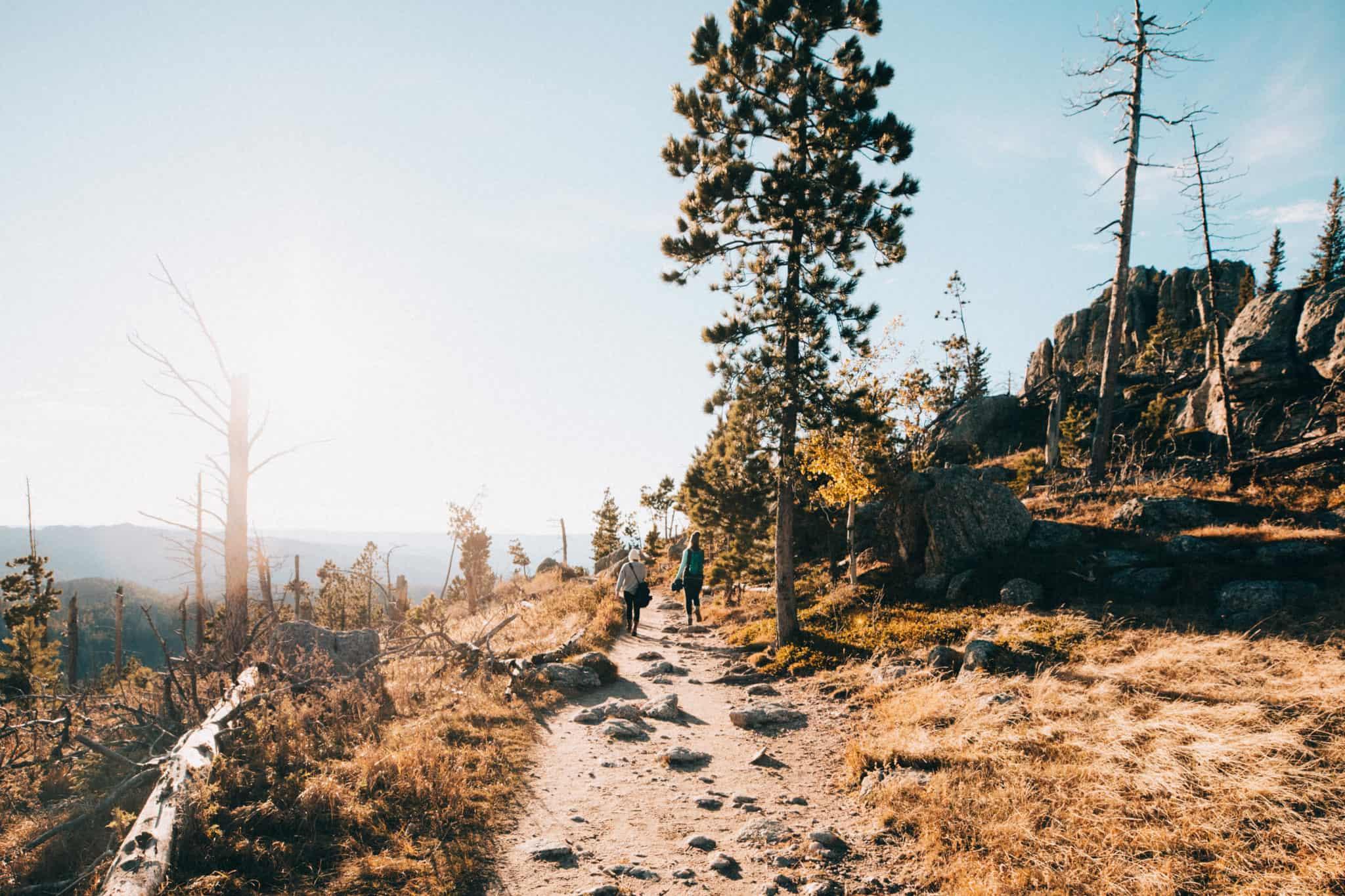 Trail view of the Black Elk Peak Hike