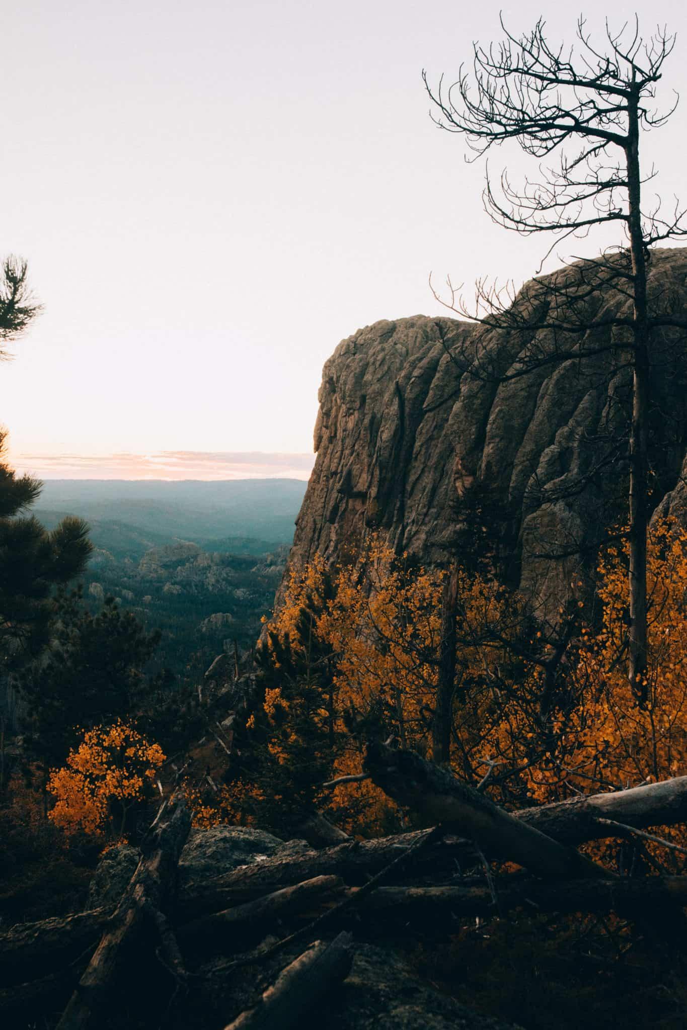 Cliff Dropoff in Black Elk Peak Wilderness, South Dakota