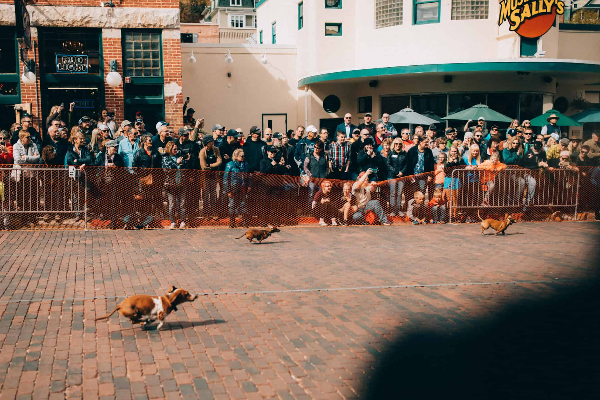weiner dog raves, Oktoberfest in Deadwood, South Dakota