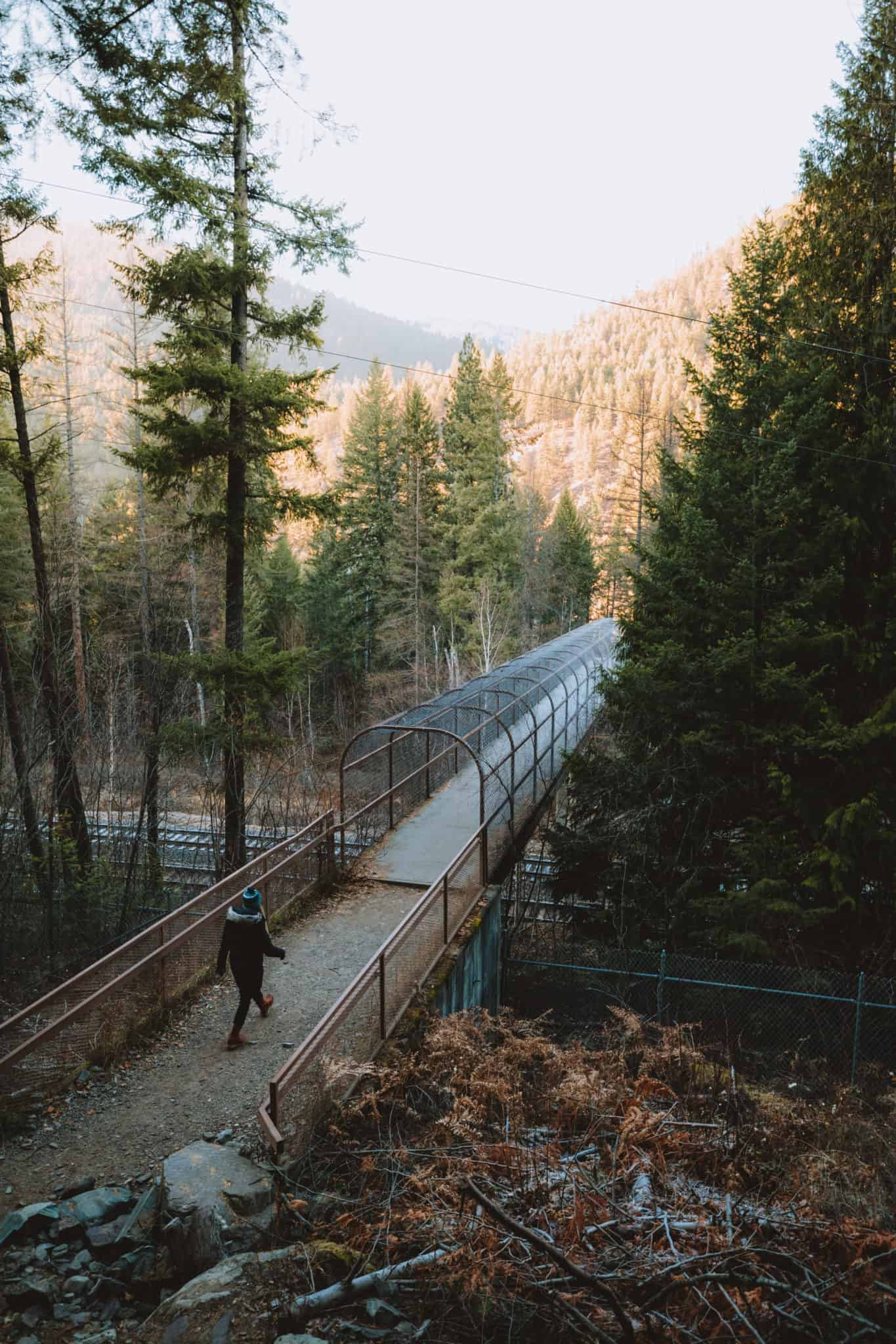 Train Tunnel on Kootenai Falls Trail - Montana - TheMandagies.com