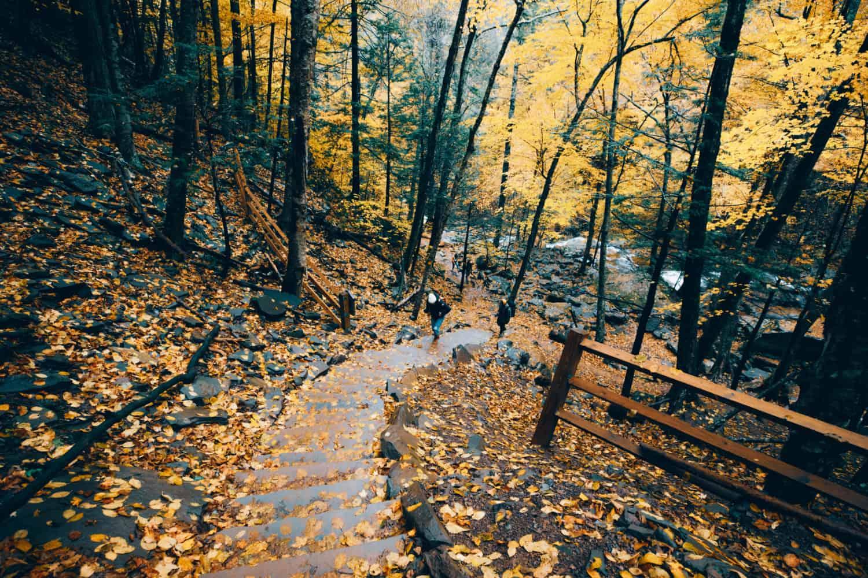 Kaaterskill Falls Trail Stairs - TheMandagies.com
