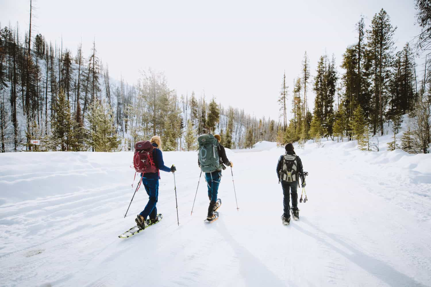 Snowshoeing Idaho city trails
