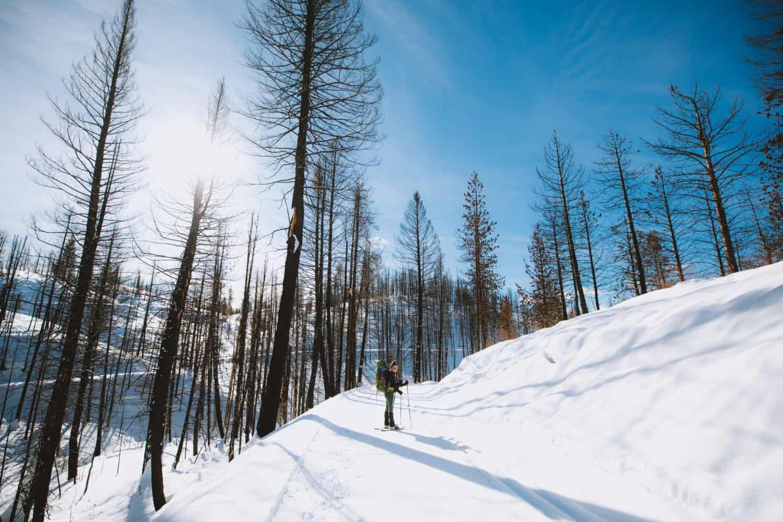 Hiking Skyline Trail, Idaho City Park N Ski Trails (TheMandagies.com)