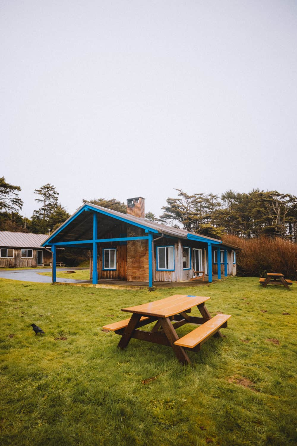 Kalaloch Lodge Beachside Cabins - Washington Coast, Olympic National Park Lodging - TheMandagies.com