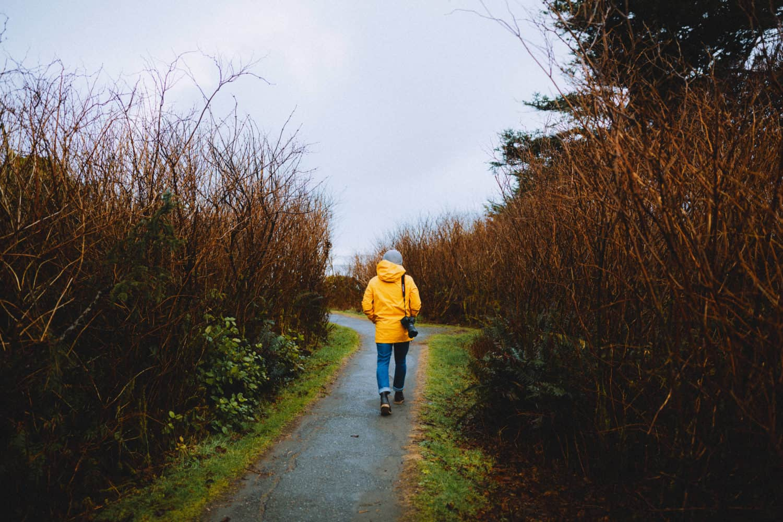 Path to Tree of Life, Washington Coast - TheMandagies.com