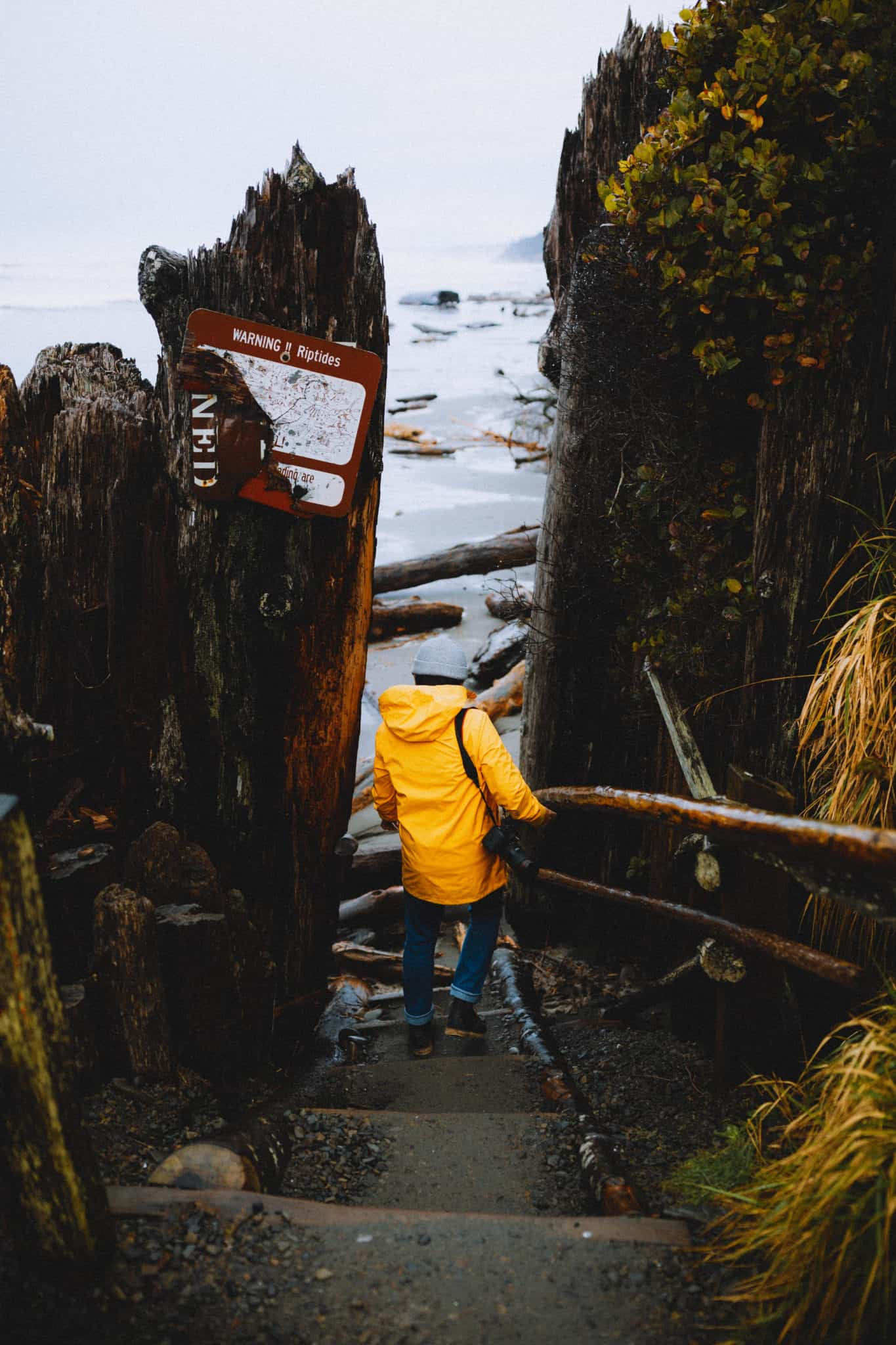 Berty walking down stairs to Kalaloch Tree Root Cave