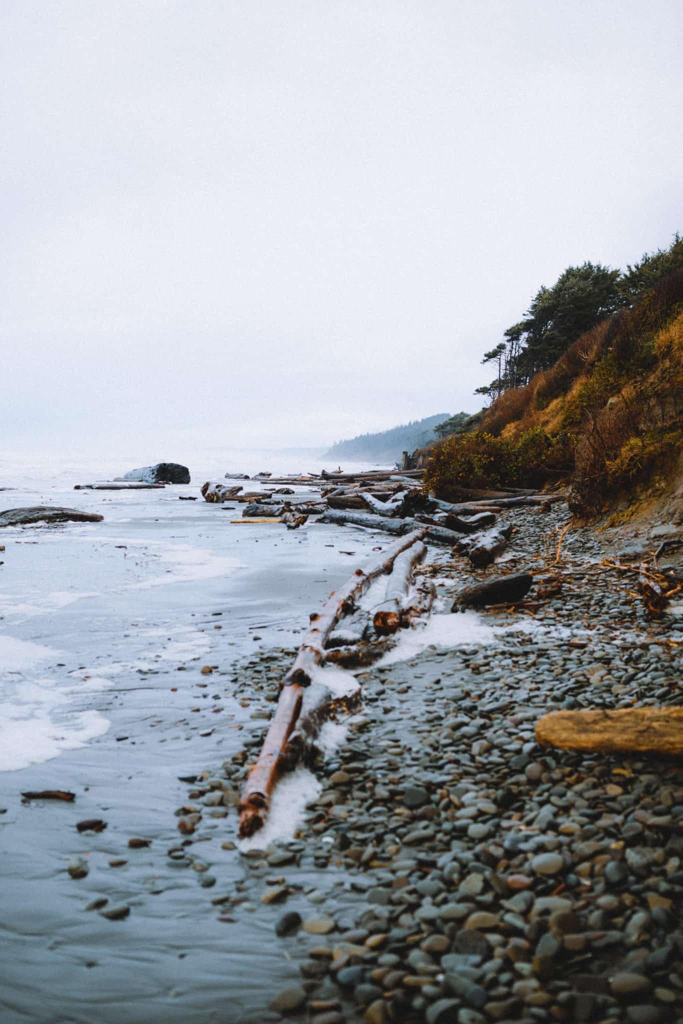 Washington Beach trial to Tree Of Life