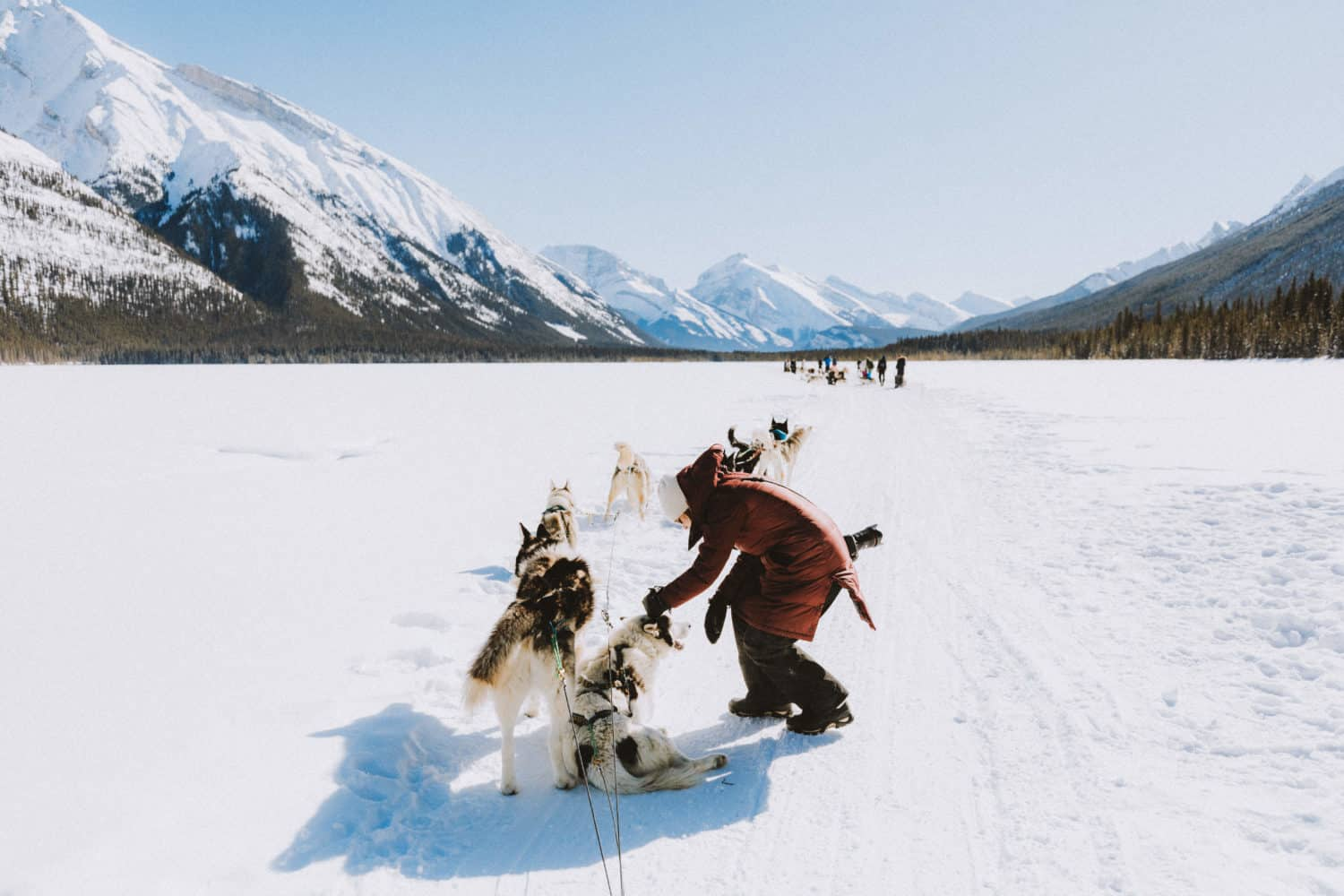 Petting the sled dogs on a break - TheMandagies.com