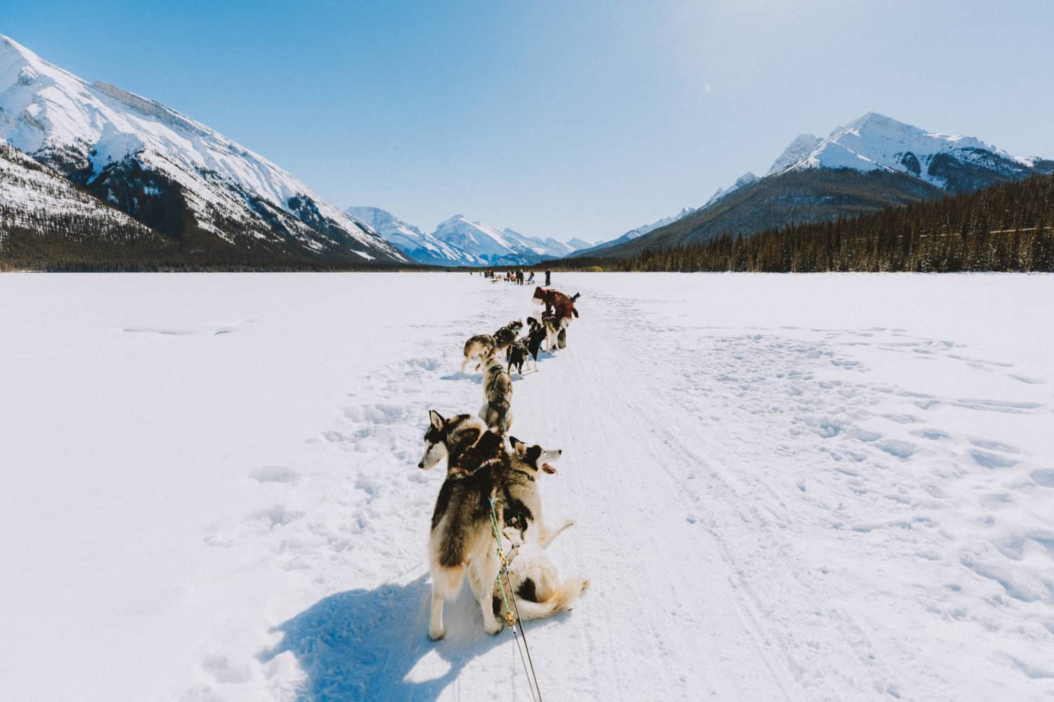 Taking a break from Dog sledding in Banff on the pond - TheMandagies.com