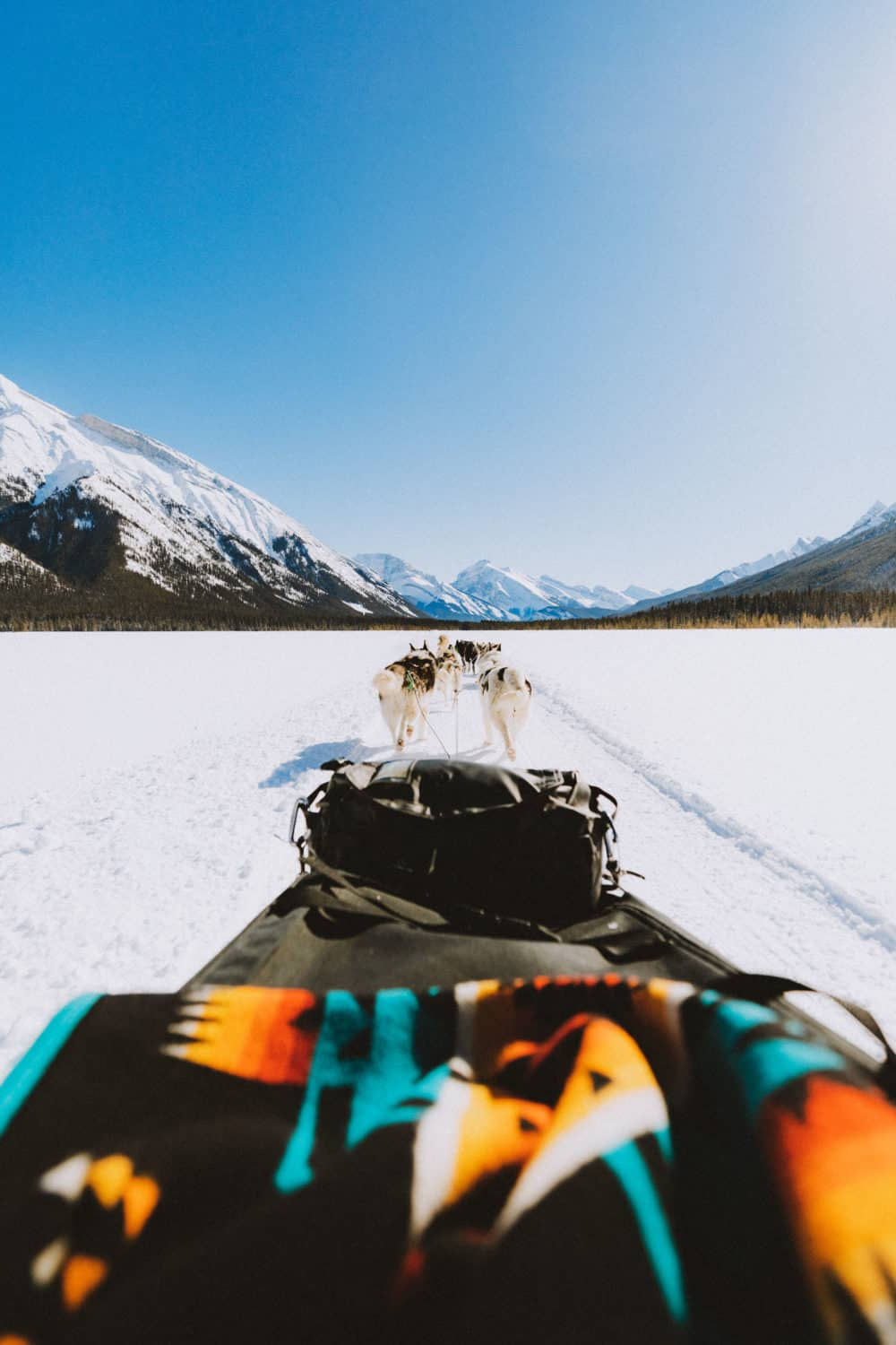 View from dog sled in Banff National Park - TheMandagies.com
