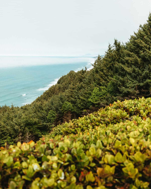 Cape Sebastian State Scenic Corridor, Oregon Coast Road Trip Route