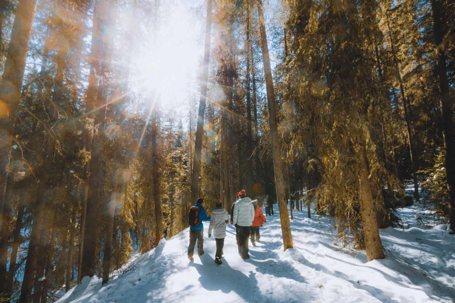 Hiking Johnston Canyon In Winter - Trail - TheMandagies.com