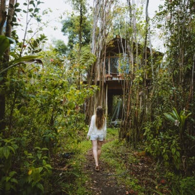 Wake Up In A Tropical Treehouse In Hawaii: The Best Airbnb In Hawaii