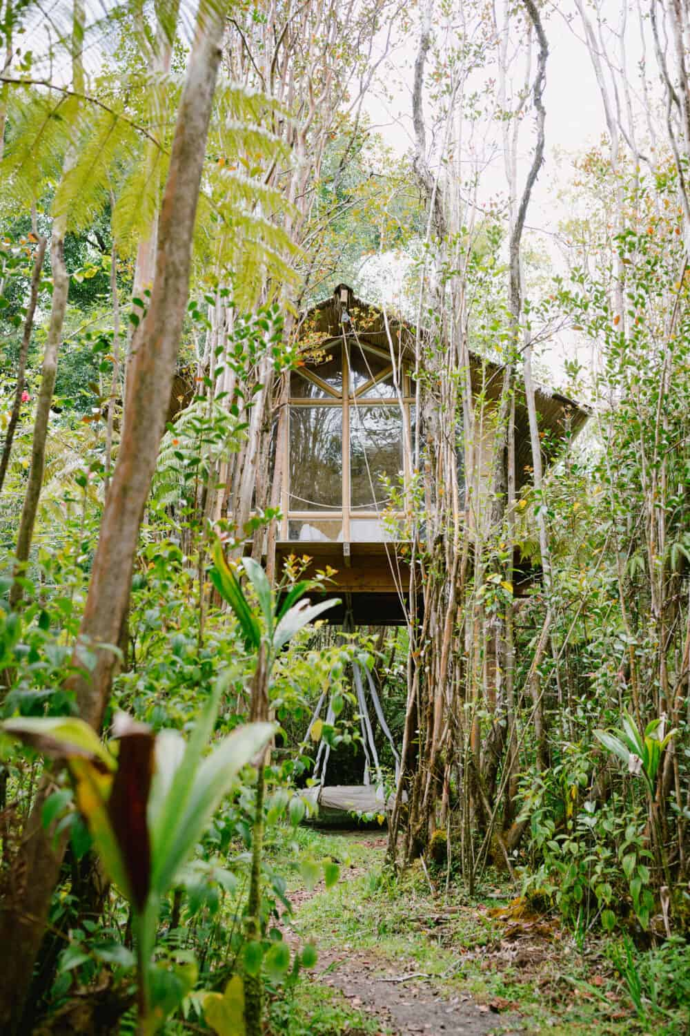 Best Treehouse In Hawaii -Outside View - TheMandagies.com