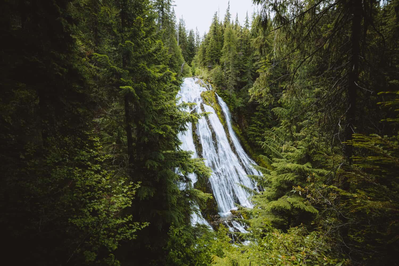 Upper Viewing Platform of Diamond Creek Falls - TheMandagies.com