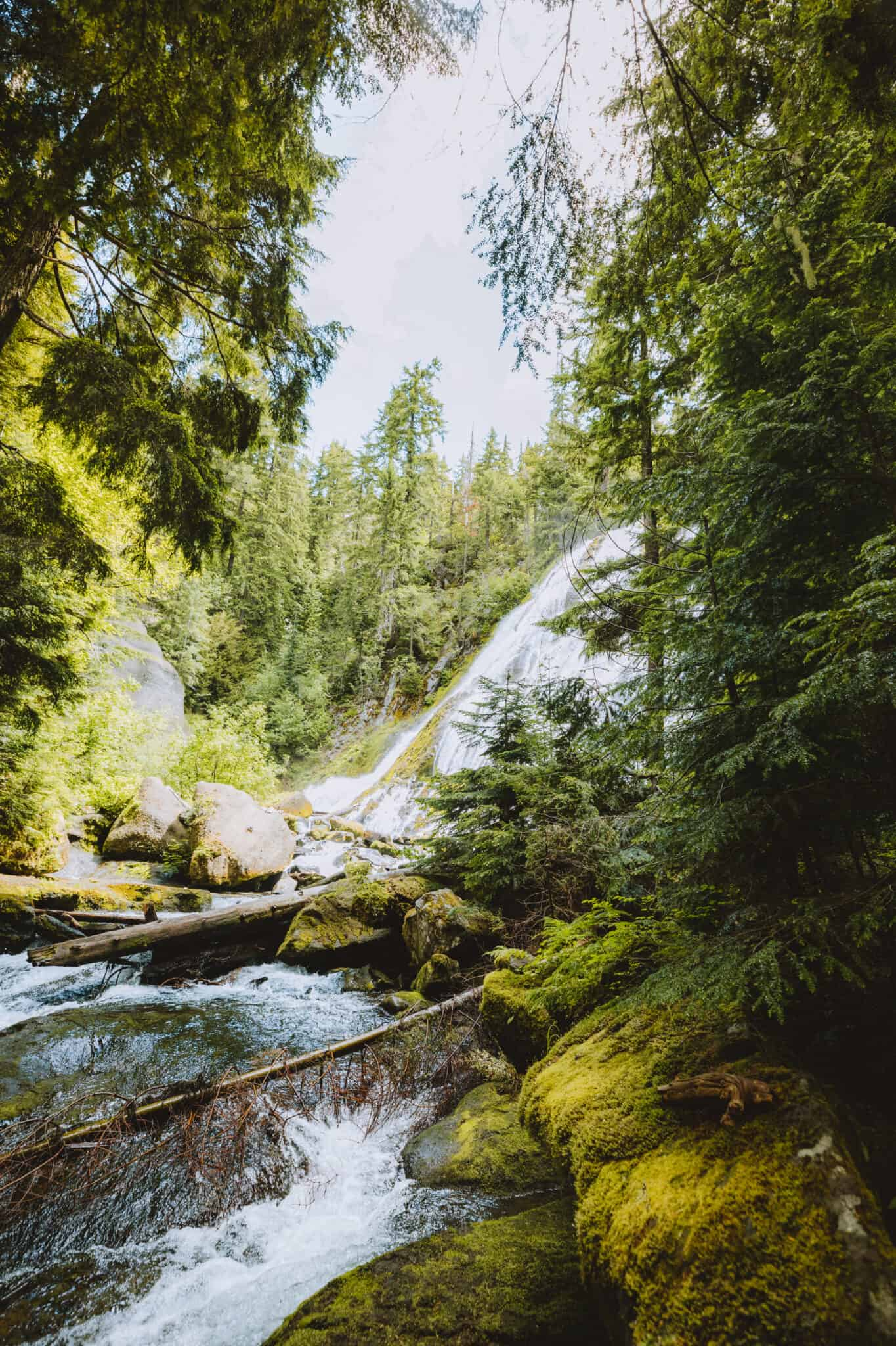 Approaching Diamond Creek Falls on trail